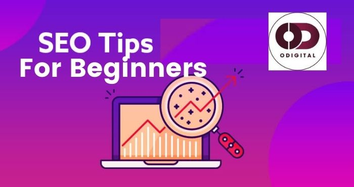 Seo tips for beginers