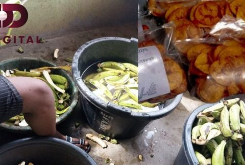 How To Start A Successful Plantain Chips Business in Nigeria